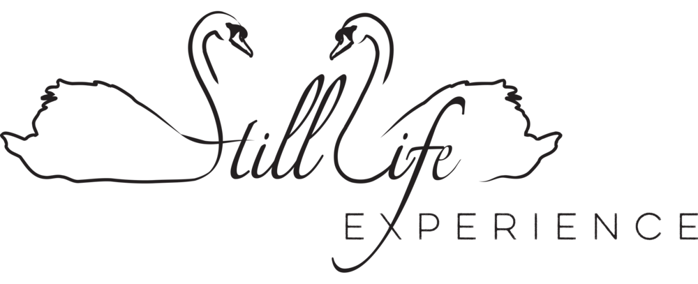 Still_Life_Logo_Experience (1).png