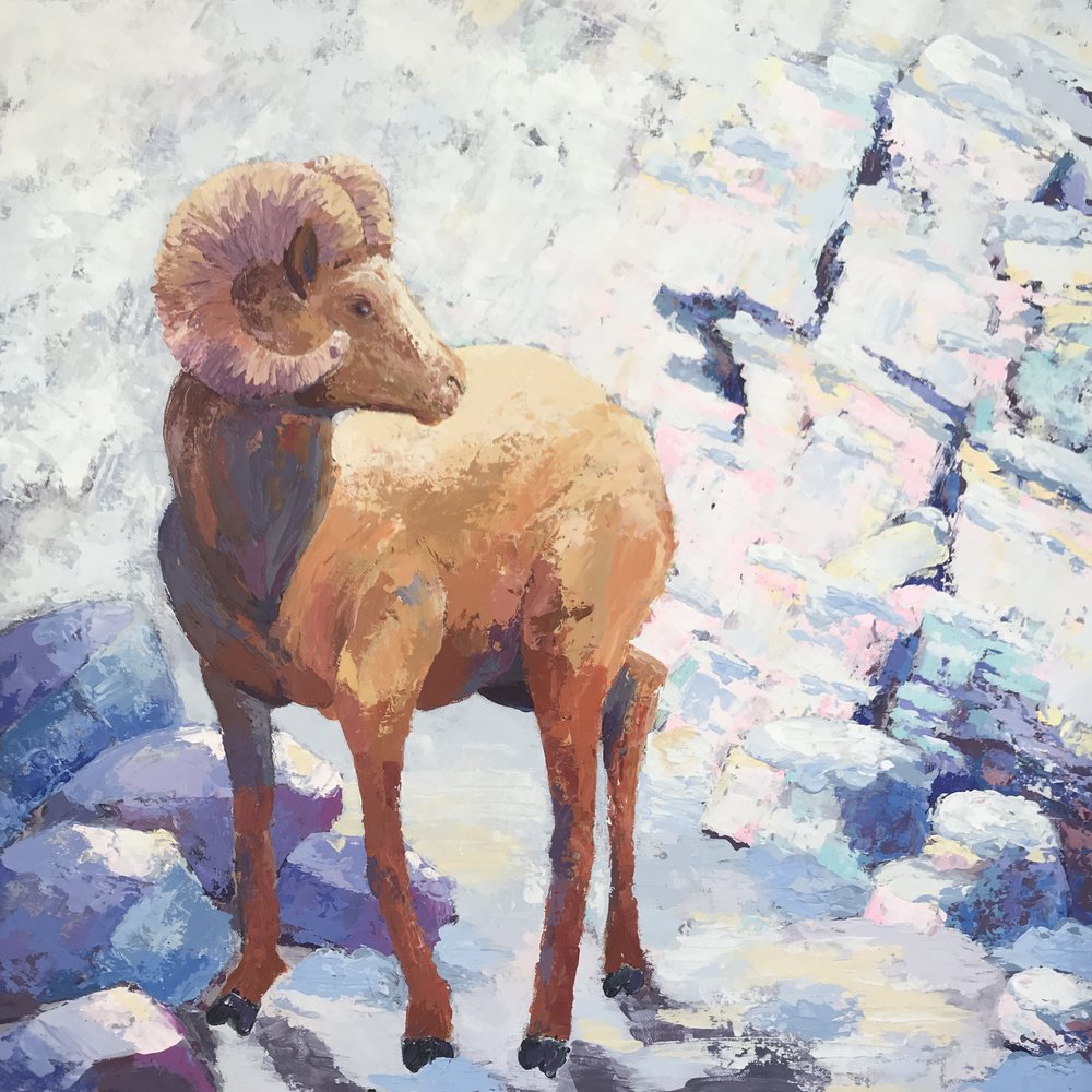 DWenarchuk - Winter Ram 24x24 Acrylic on Canvas.jpeg
