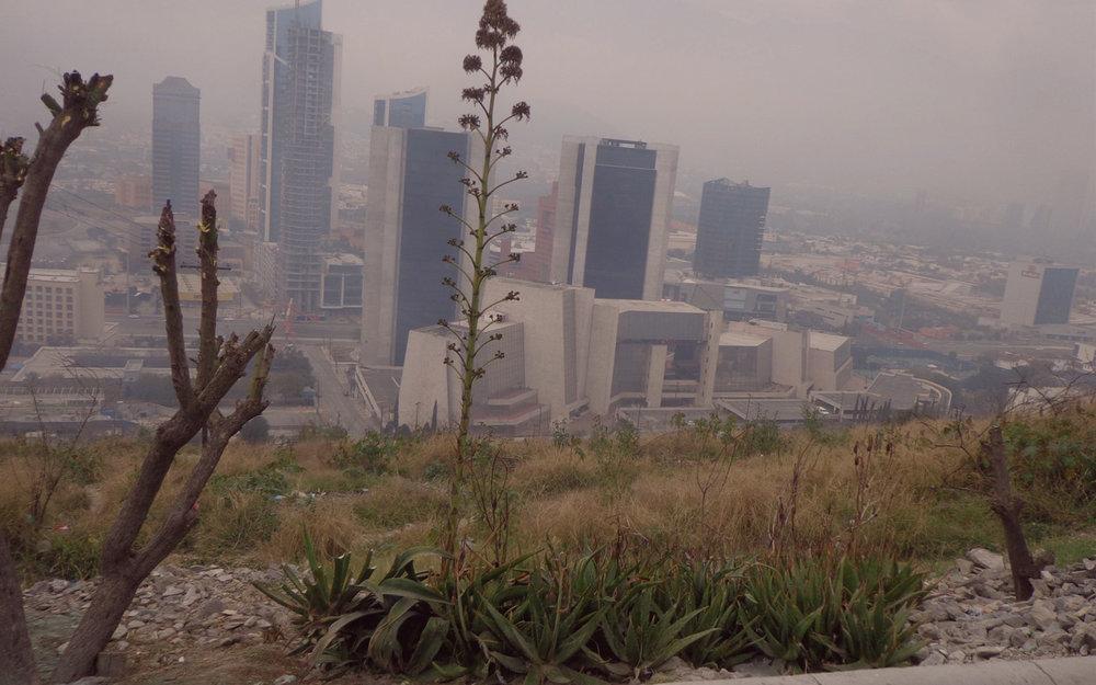 ...su ubicación es privilegiada, tiene  el potencial  de conectar a Monterrey con San Pedro, cuenta con vistas espectaculares en sus partes más altas...
