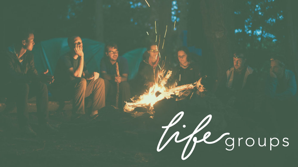 life-groups-new-PLAIN.jpg