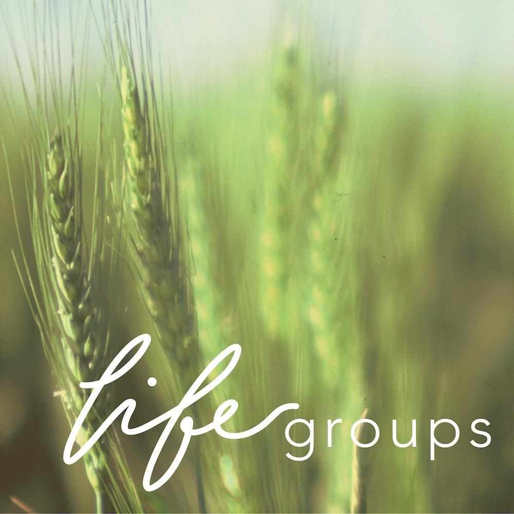life groups square-02.jpg