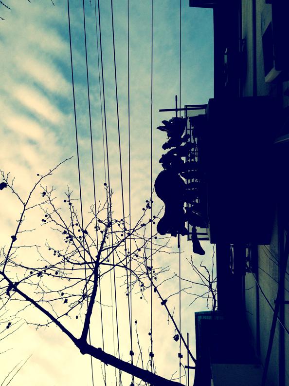 Looking up (Shanghai)