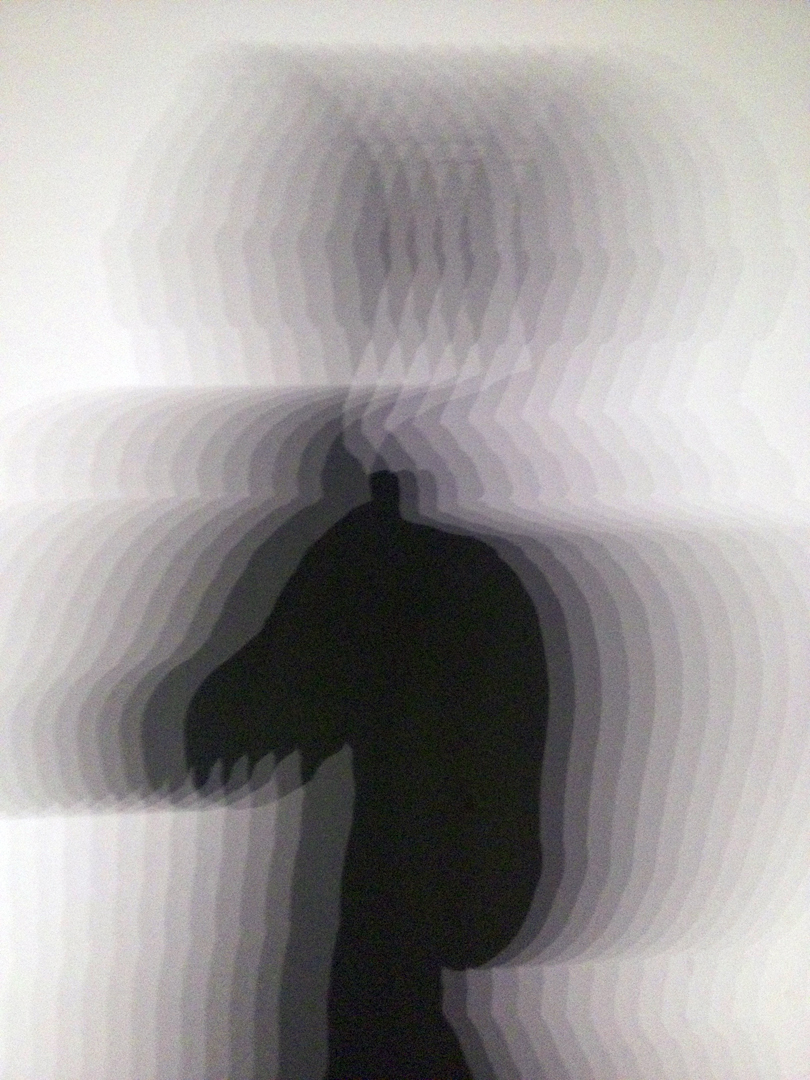 Sliced Silhouette