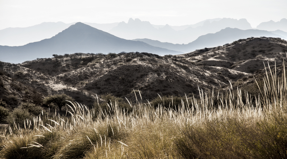 obrien_landscape_nature_8.jpg