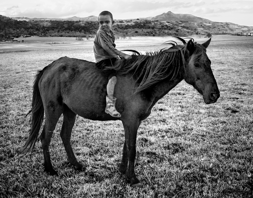 kid-on-horse-enviro-2.jpg