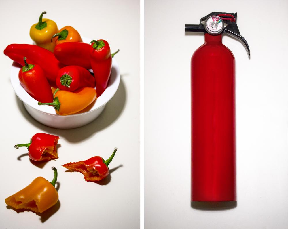 pepper dyptych.jpg