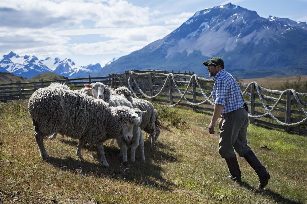sheep mountain.jpg