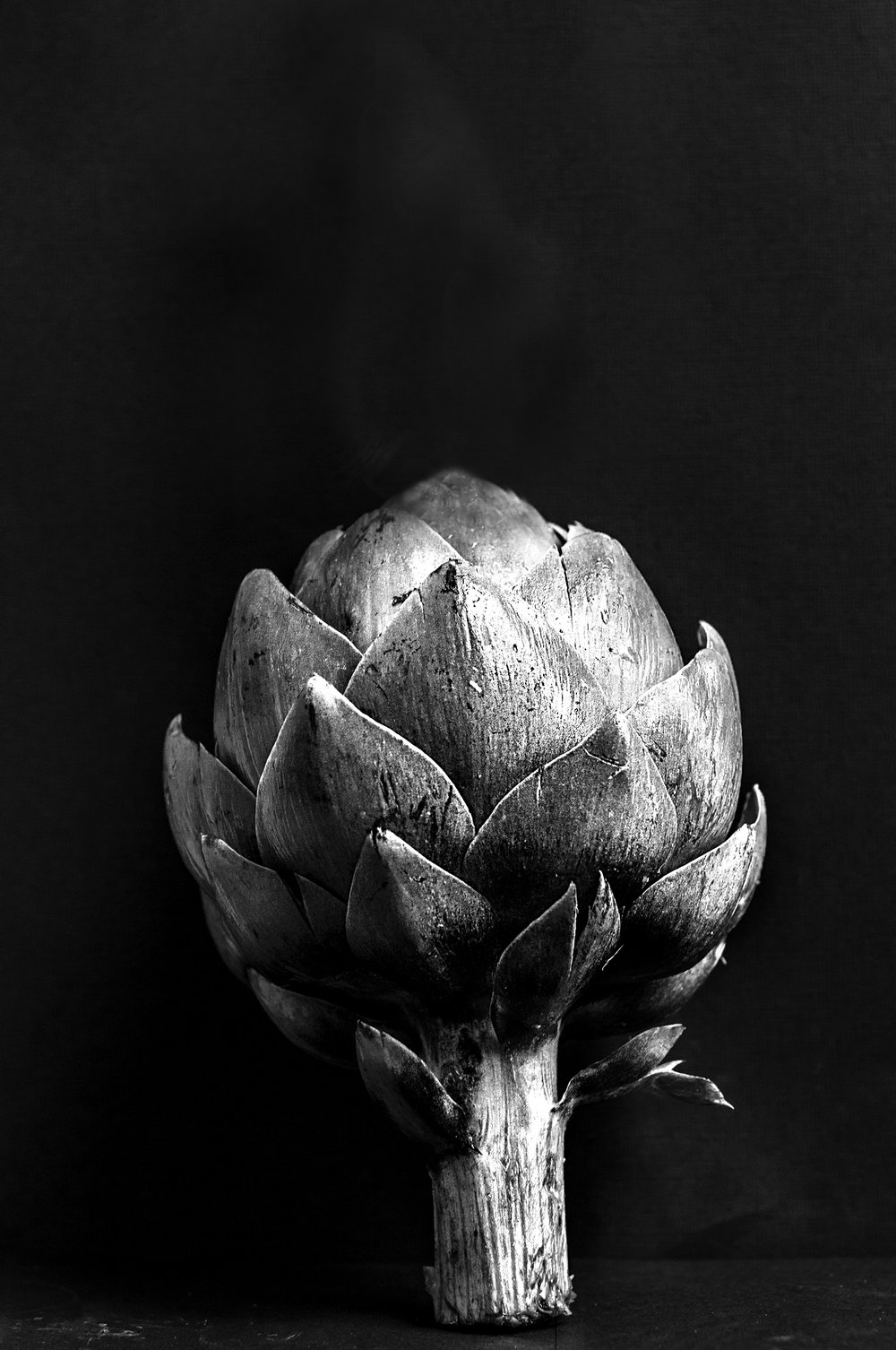 Artichoke for Website.jpg