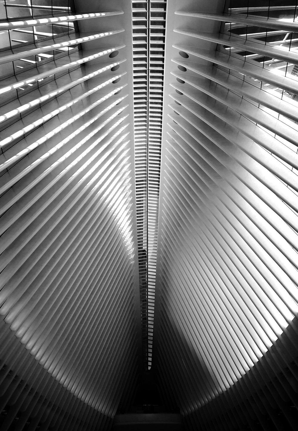 Calatrava2.jpg