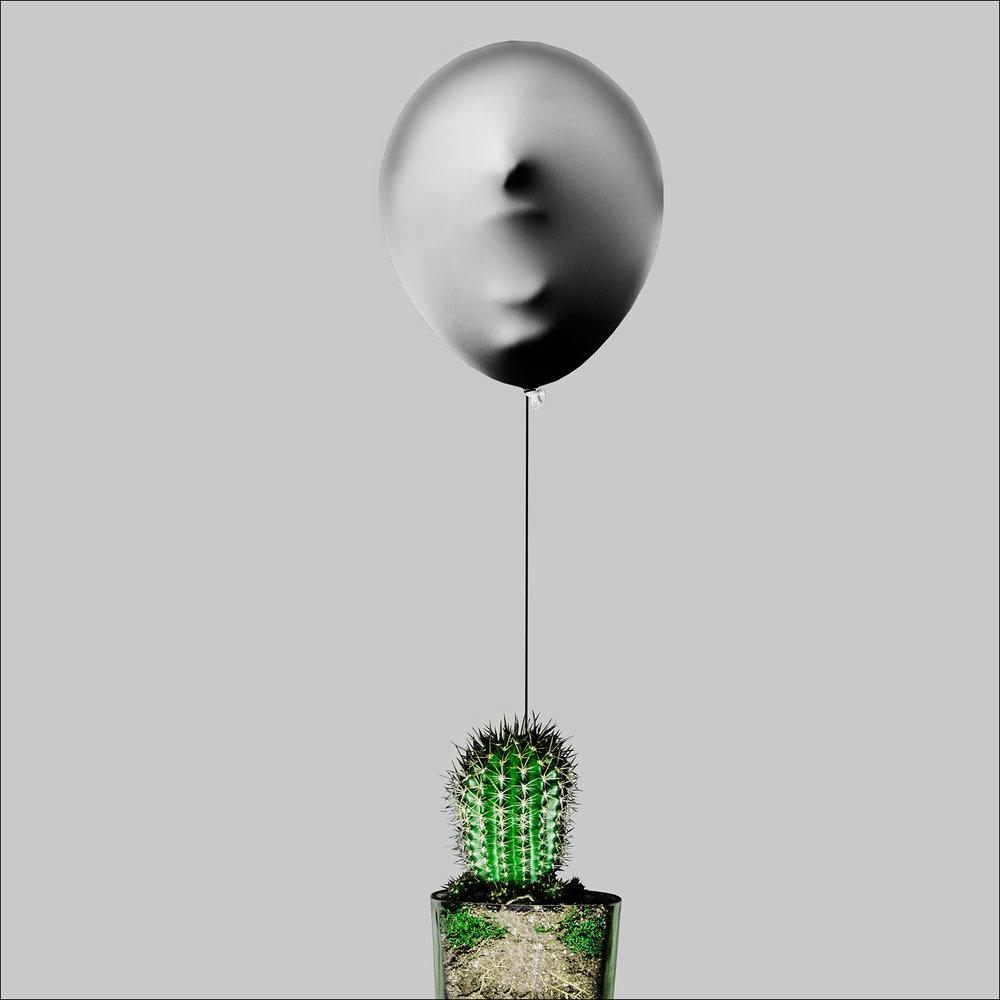Cactus--Final.jpg