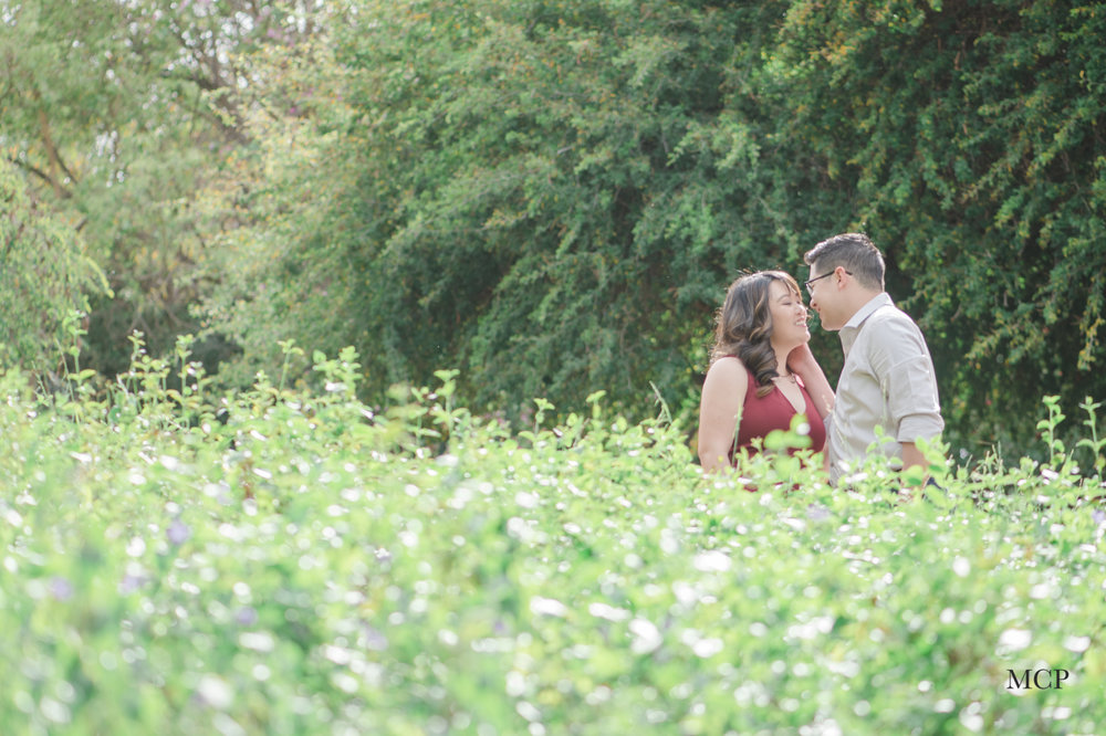 Stacey + Andrew Engagement BLOG-MCP7.jpg