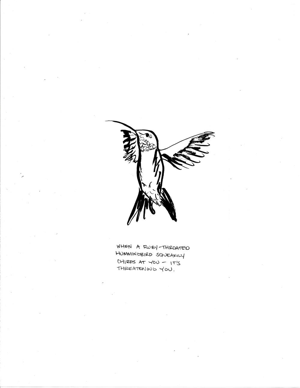SFAB, pg 16, 2015.jpeg