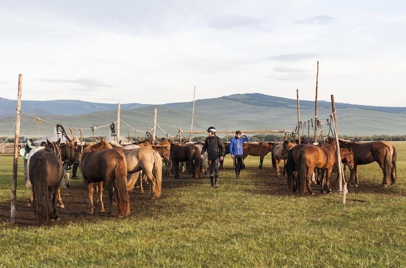 Richie Killoran and Donal Fahy carefully choose their horses at Horse Station 16 ©Richard Dunwoody