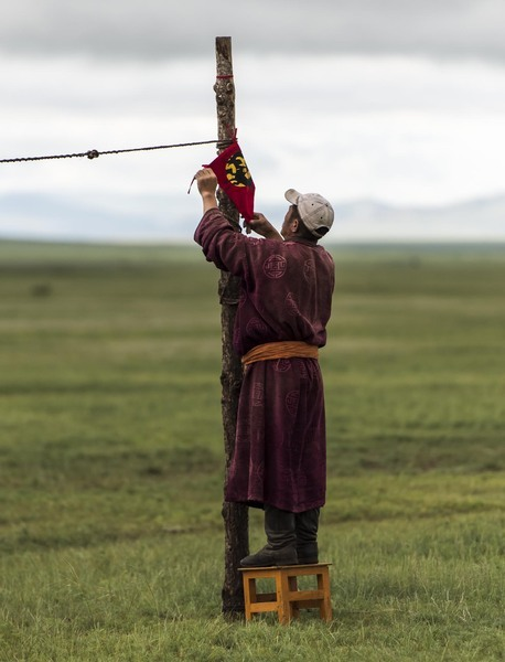 A Herdsman attaches a Mongol Derby flag to the Horse lines - Monday 13th August ©Richard Dunwoody