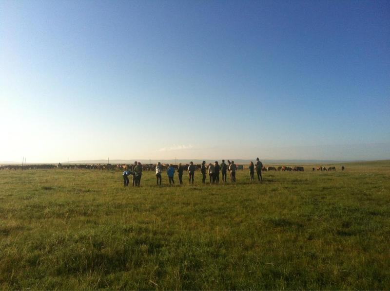 "Mongol Derby 2012 riders get their first look at the semi-wild horses at the start camp on the first day of pre-race training. A ""daunting sight"" according to 2011 veteran Barry Armitage, who took this photo."
