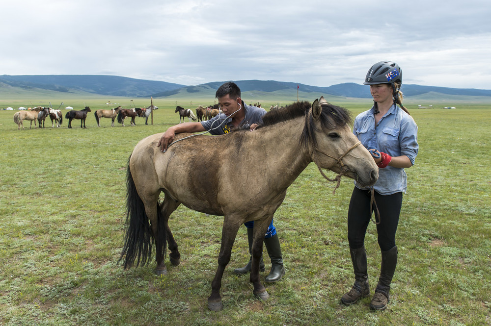 Mongolian vet Baaska checks over Kirsten Melis's horse after leg 18, 9th Aug 2013