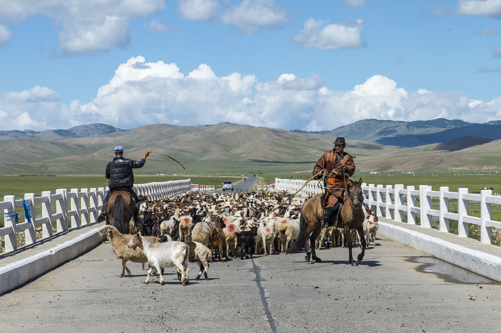 A slow-moving roadblock at Tsenkher Bridge. All riders and crew had to cross this on the way to horse station 12, 8th Aug 2013