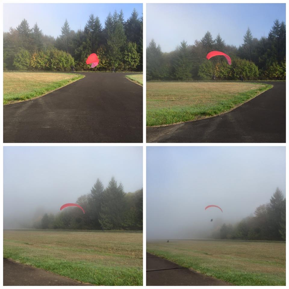 This is Mr Tom taking off on Wednesday morning. 100% visibility. Shockingly, this wasn't when he hit the tree.