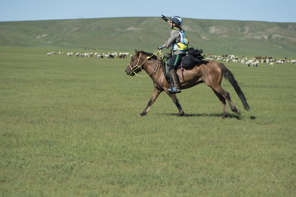 2015-08-05-Mongol-Derby-day-01URTUU3-1c-83.jpg