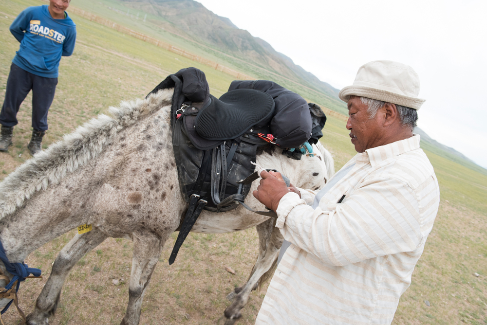 Detail on the Mongol Derby saddle, designed by Franco-C in Mooi River, RSA. This herder is pretty interested in it too.