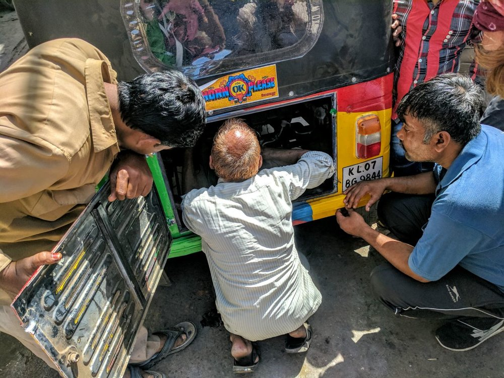 Mr Mustachio, RRApr17, -Mr Mustachio is still at the doctors in Jodhpur.jpg