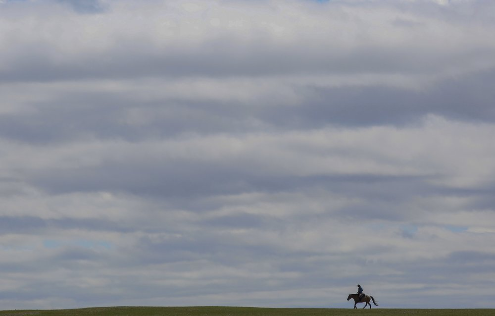 A horse and rider on day 1 of The 2017 Mongol Derby on 9.8.2017. in Mongolia. Picture by: (C) Julian Herbert.