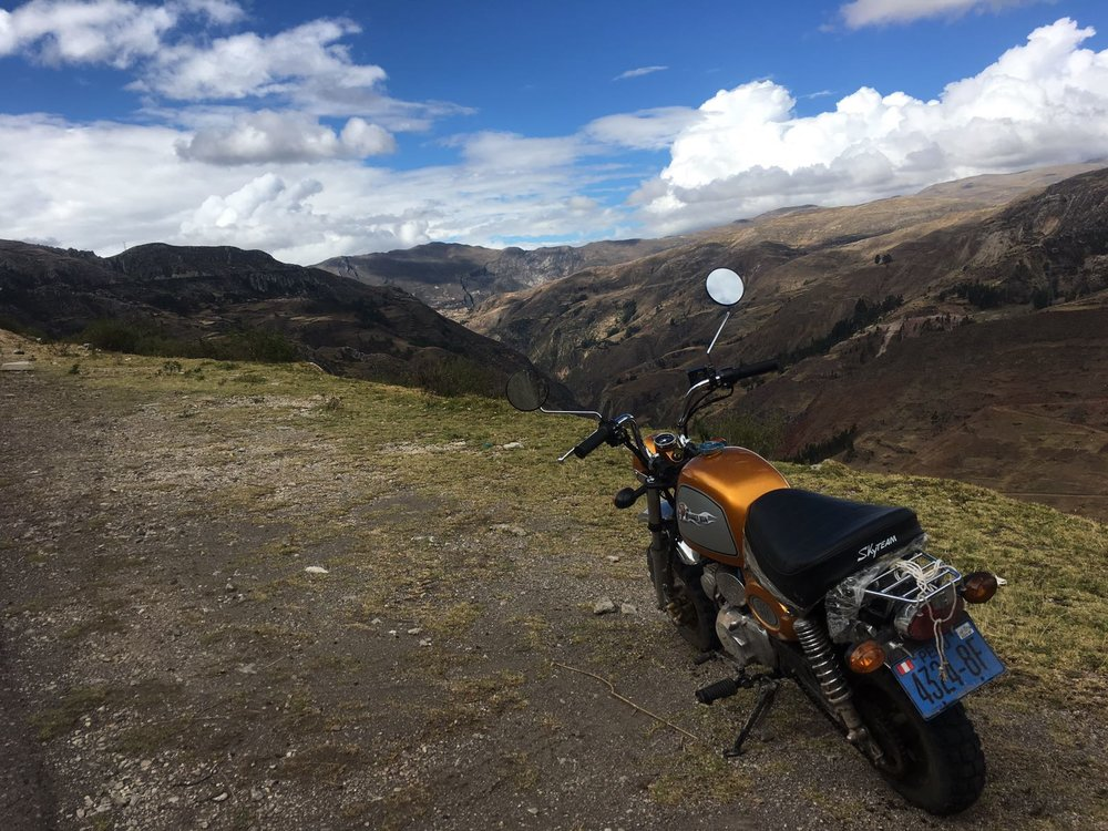 FACT: Any view immediately improved with a monkey bike