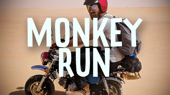 MONKEY RUN.jpg