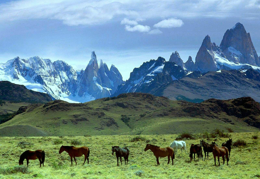 The Gaucho Derby   A new world-class horse race in Patagonia.