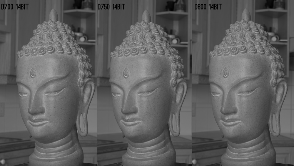 D700 (8.5 microns), D750 (5.9 microns), D800 (4.8 microns) cameras shot at F8 and compared at even histogram in Lightroom. Work RAW files available here