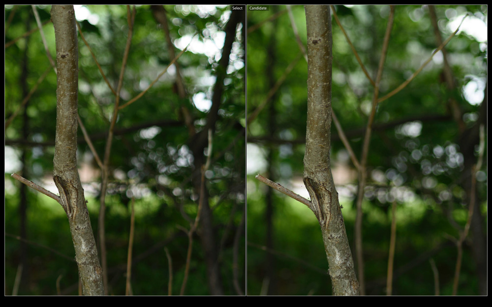 Planar 1.4 (left), Nokton 1.4 (right)