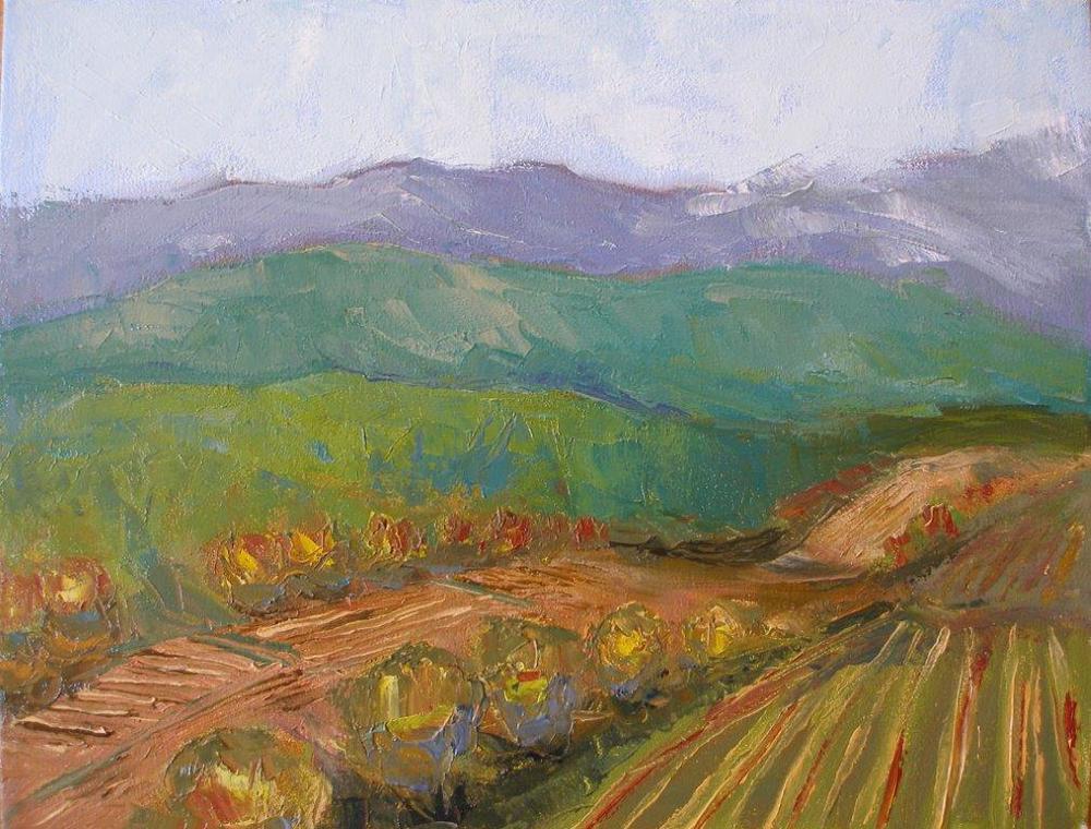 Field in Todi
