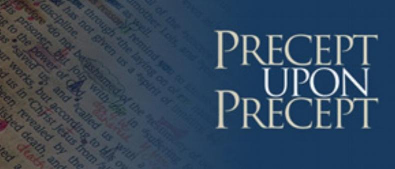Precepts-Banner.jpg