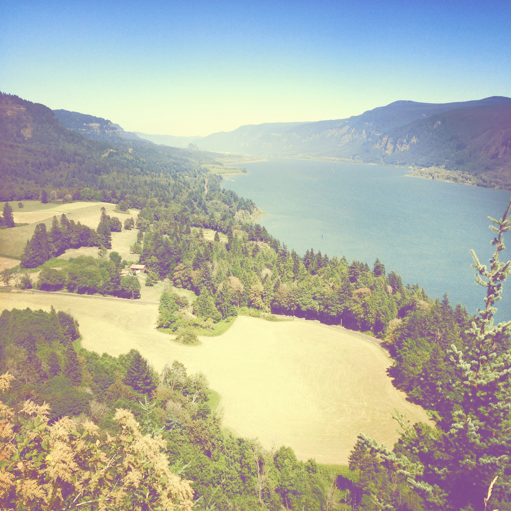 View from paragliding flight in the Columbia River Gorge near Portland, OR.