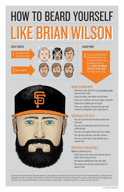 (via  The McSweeney's Store - How to Beard Yourself Like Brian Wilson poster )