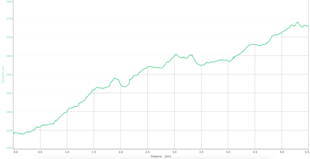 elevation graph - Chowari Jot to Dainkund ( what is this? )