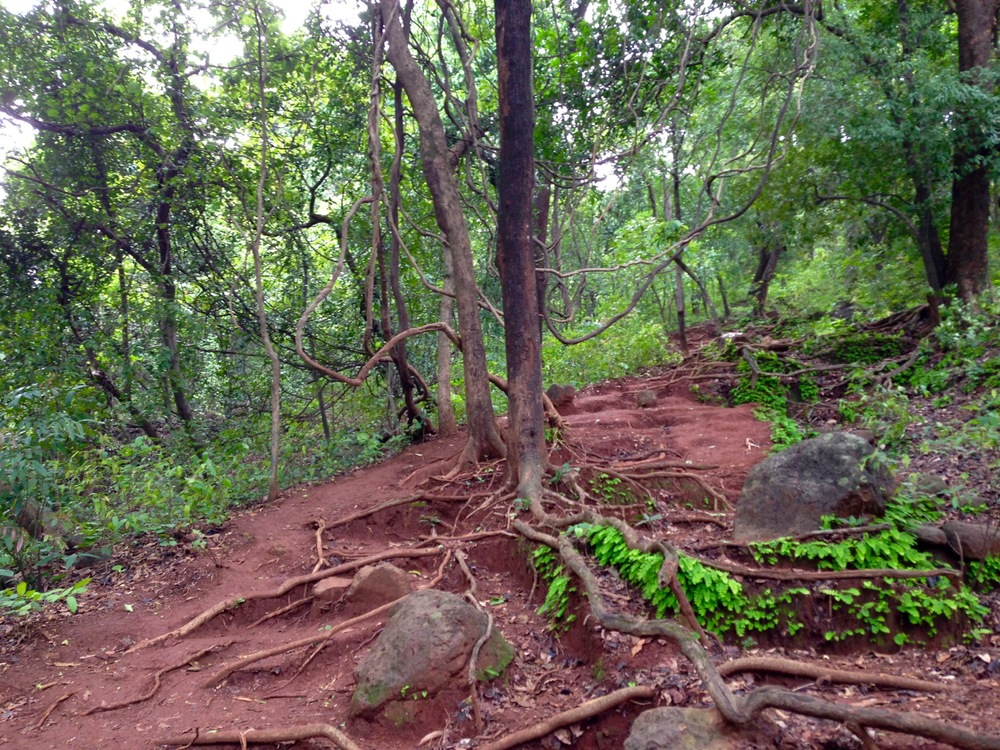 Karnala Fort Trail. Mud!