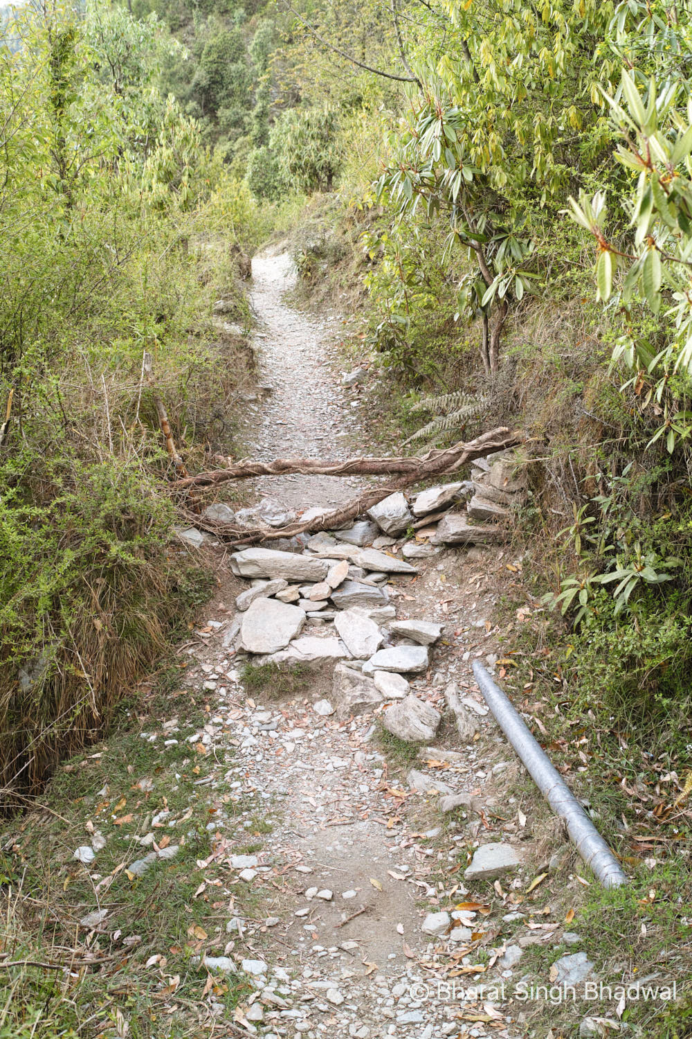 Wooden fork and the water pipeline to the right