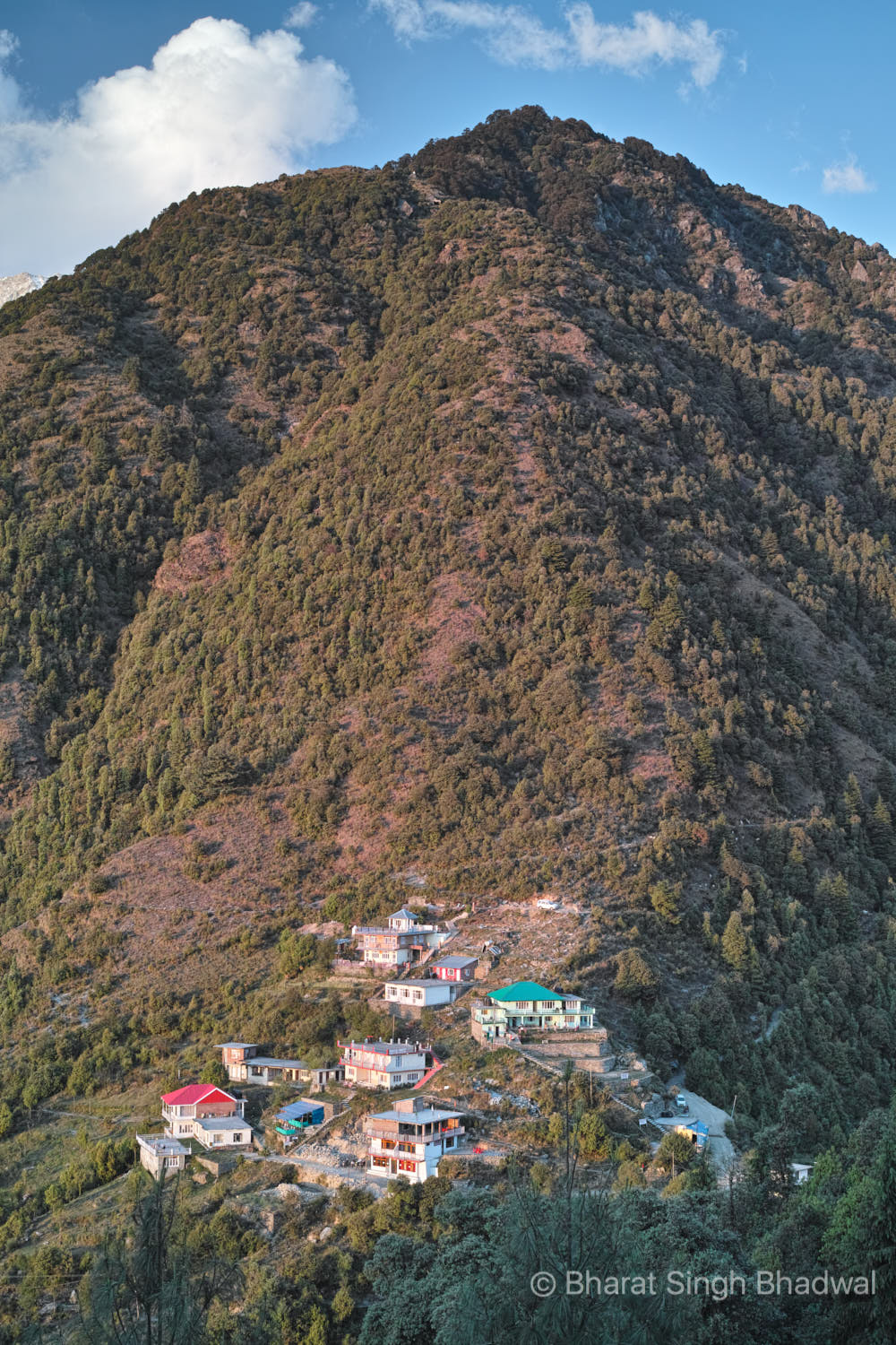 Gallu Temple with its proliferation of Guest Houses, backed by its protective hillock. Two trails are clearly visible. the one on the right leads to  Triund  and the one on the left leads to  Waterfall Cafe .