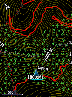 Topographical map in inverted/night mode