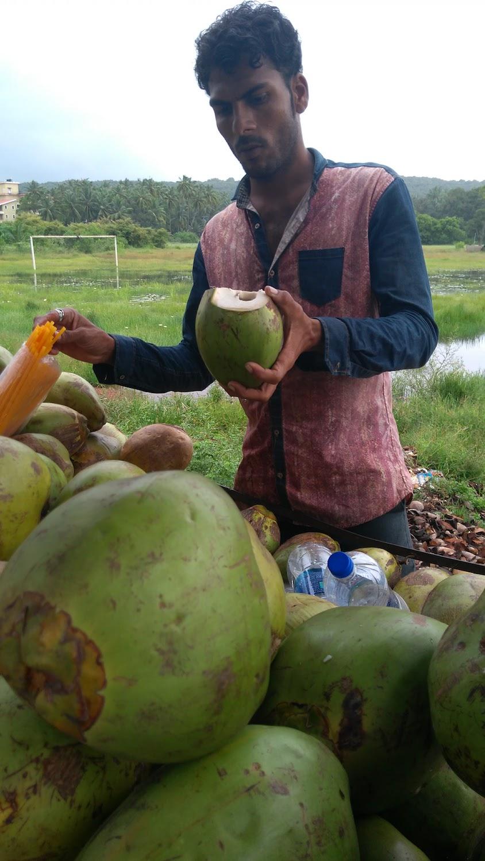 coconut water fatbike india bikepacking Goa.jpg