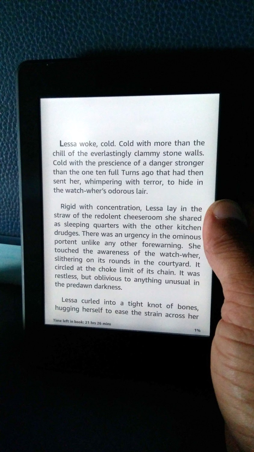 "The Kindle on an Indian Railways journey is the perfect ""timepass"". Kindle reckons this book will last me 21 hours, which is perfect for a Delhi - Mumbai train"