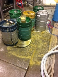 CRAZY amounts of hop residue covering the brewhouse floor, as we keg the last of this beer up.