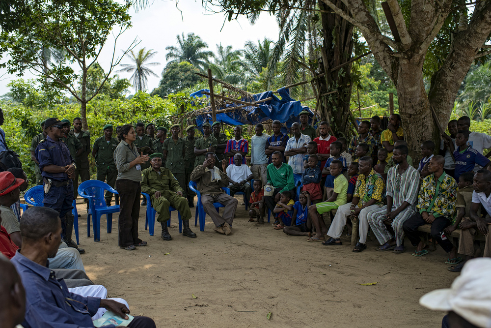 Discover the key players & NGOs working in the Congo.