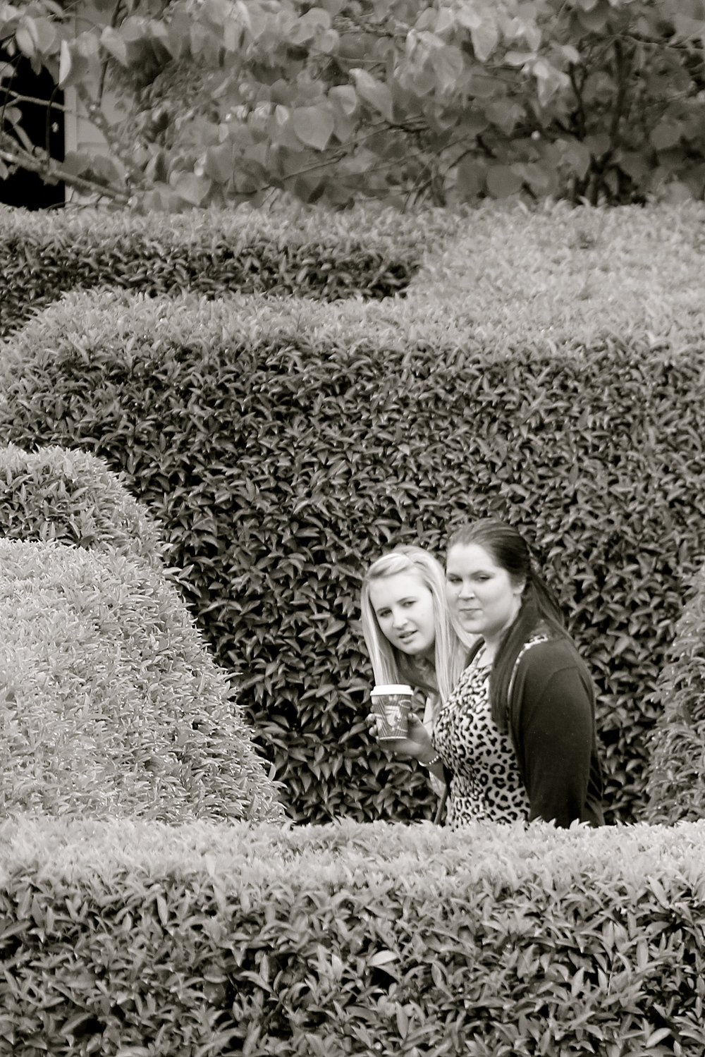 Pairs & Caitlin tackle the Maze.
