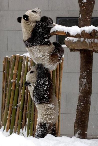 """""""C'mon you got it! I've got your back"""""""