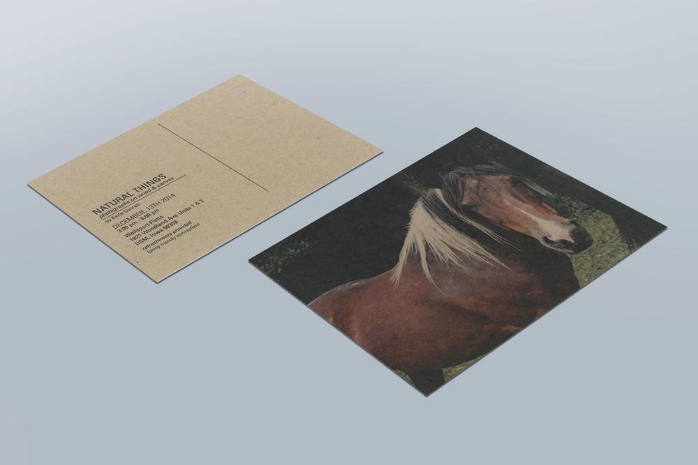 postcard1.jpg