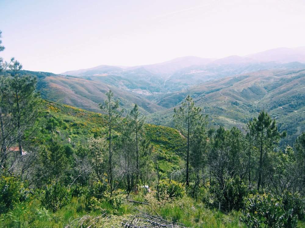 the Serra Da Estrela