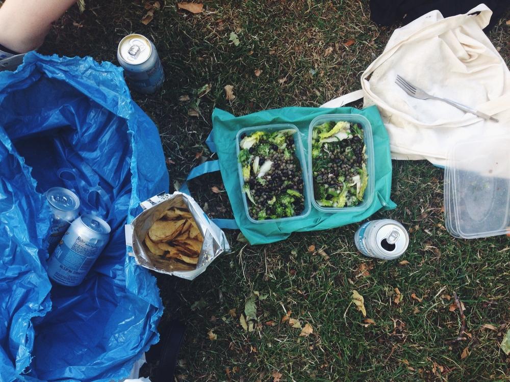 vegan lentil picnic