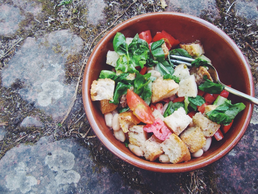 stale bread and tomato salad with beans
